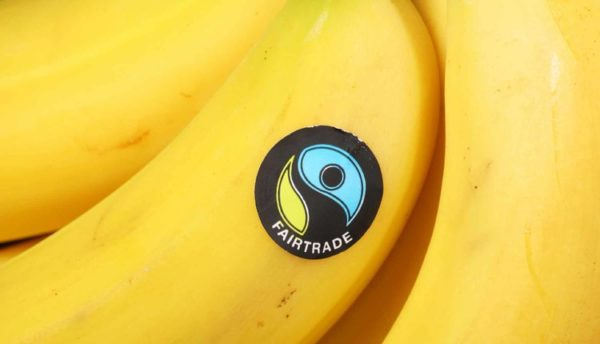 Fair Trade Bananas - HeadStuff.org